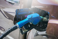 Close-up fuel nozzle. Fill up fuel . Close-up fuel nozzle. Fill up fuel at gas station Royalty Free Stock Images