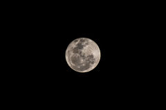 Close up of a full moon Royalty Free Stock Photography