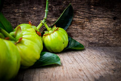 Close up of garcinia cambogia fresh fruit on wood background. Garcinia atroviridis is a spice plants and high vitamin C and hydroxy citric acids HCA for diet Royalty Free Stock Photos