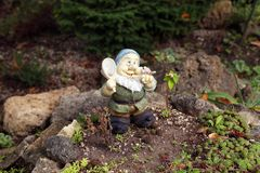 Close up of garden gnome. Royalty Free Stock Photo