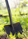 Close up of garden shovel Royalty Free Stock Photos