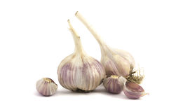 Close up of garlic bulb. Isolated over white Stock Image