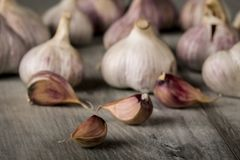 Close-up garlic bulbs and garlic cloves on wooden background. Garlic. Fresh garlic. Stock Images