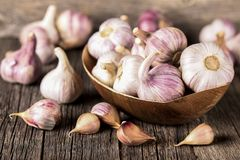 Close-up garlic bulbs and garlic cloves on wooden background. Garlic. Fresh garlic. Stock Image