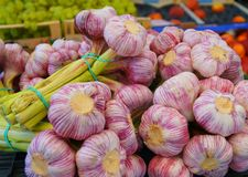 Close up of garlic bulbs royalty free stock photos