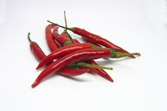Close-up of chili peppers on white background stock image