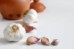 Close up of garlic and cloves Stock Photos