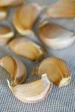 Close up Garlic stock image