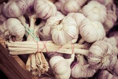Close up of garlic on market stand Royalty Free Stock Photos