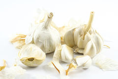 Close up garlic peels and cloves on a white background.  Stock Images