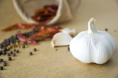 Close up garlic with spices background Royalty Free Stock Photo
