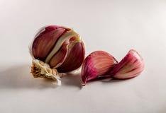 Close-up of garlic on white background stock image