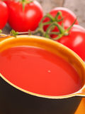 Close up of gazpacho with fresh tomatoes Royalty Free Stock Photography