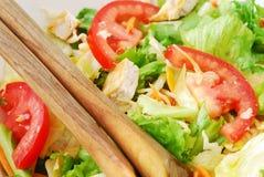 Close-up gemengde salade met kip Royalty-vrije Stock Afbeeldingen