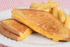 Close-up geroosterde kaassandwich met gebraden gerechten stock afbeeldingen