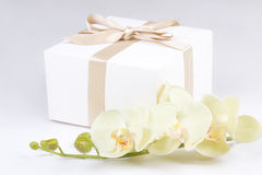 Close up of gift box with ribbon and orchid over white Royalty Free Stock Photo