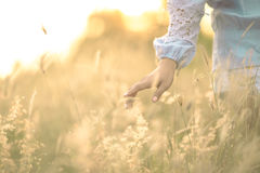 Close up girl's hand on grass flower field. scenery scene,feeling freedom Stock Image