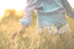 Close up girl's hand on grass flower field. scenery scene,feeling freedom Royalty Free Stock Photos
