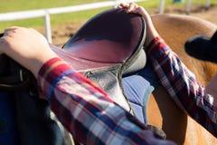 Close-up of girl adjusting saddle on horse Stock Photos