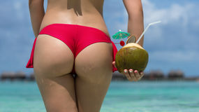 Close up girl back in bikini against ocean beach and coconut Royalty Free Stock Images