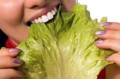 Close up girl is eating a salad leaf Royalty Free Stock Photography