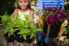 Close-up of girl and senior woman holding plants. Close-up of girl and senior women holding plants at backyard Royalty Free Stock Images