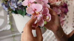 Close-up of girl sensitively touching a flowering vase in the in the room stock video