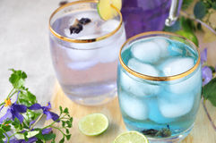 Close up Glass of Butterfly Pea Drinks royalty free stock photography