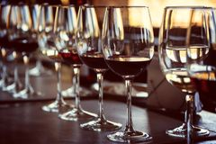 Close up of glasses of wine during a wine tasting. Close up of glasses of wine on a table during a wine tasting royalty free stock photo