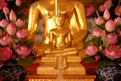 Close-up gold buddha with pink lotus lateral Stock Images