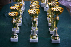 Close-up of a gold cup trophy races Royalty Free Stock Images