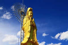 A close up of Gold Guanyin Statue of Yuantong Temple. Always holding a bottle of pure water with one poplar and willow, guanyin looks dignified and kindly, with Stock Images