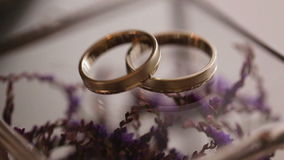 Close up of gold wedding rings on purple flowers backround. Close up of gold  wedding rings on purple flowers backround stock footage