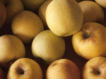 Close-up of golden apples in sunlight Royalty Free Stock Photos