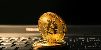 Close up golden bitcoin coin crypto Currency background concept. Stock Image