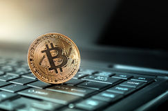 Close up golden bitcoin coin crypto Currency background concept. Stock Photos