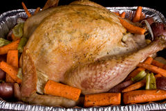 Close-up Golden Holiday Turkey. Close-up of a golden brown roasted holiday dinner whole turkey surrounded by vegetables of orange carrots, green celery and red Royalty Free Stock Image