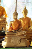 Close-up of golden meditating buddha statues Royalty Free Stock Photo