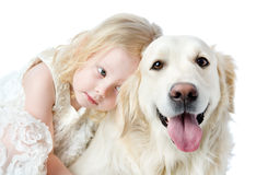 Close up Golden Retriever and girl. Looking at camera. isolated Royalty Free Stock Photography