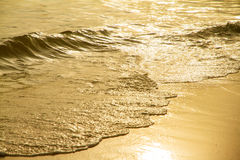 Close up golden sea wave on the sandy beach at sunset. Close up golden sea wave on the sandy beach at sunset Stock Photo