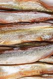 Close up of golden smoke sprats Royalty Free Stock Photography