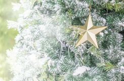 Close up of golden star on Christmas tree with copy space Stock Photo