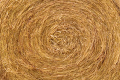 Close up of the golden Straw bale in summer Royalty Free Stock Images