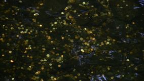 Close up - Goldish Coins in clear rippling water at the bottom of a waterfall/ well/ landmark stock footage
