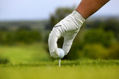 Close-up of a golf ball. Golf Ball on Tee with green Grass Background Stock Photo