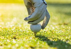 Close-up of golf ball with glove. Royalty Free Stock Photos