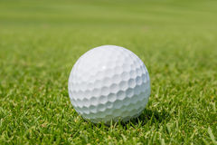 Close up Golf ball on grass with blurred green course backgr Stock Image