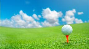 Close up golf ball on green grass field. Sport golf club royalty free stock photography