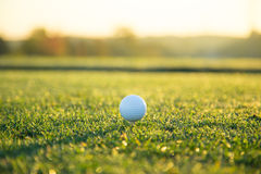 Close-up of golf ball. Close-up of golf ball during sunrise Stock Photos