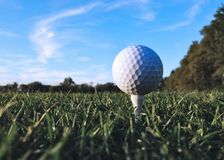 A golf ball on a tee stock images